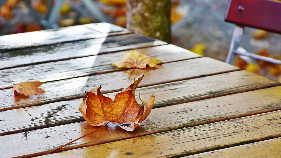 The Best Treatments For Outdoor Wood, Best Sealer For Outdoor Wood Furniture Uk